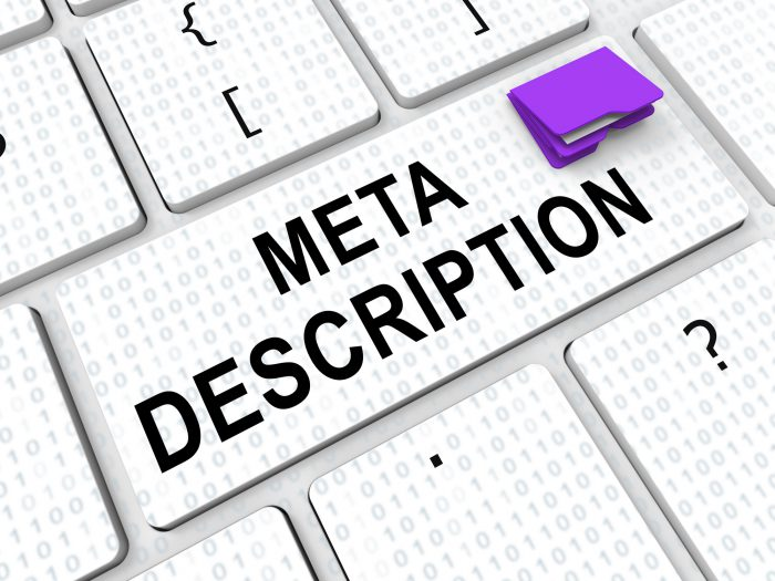 The Importance of Meta Descriptions for eCommerce SEO
