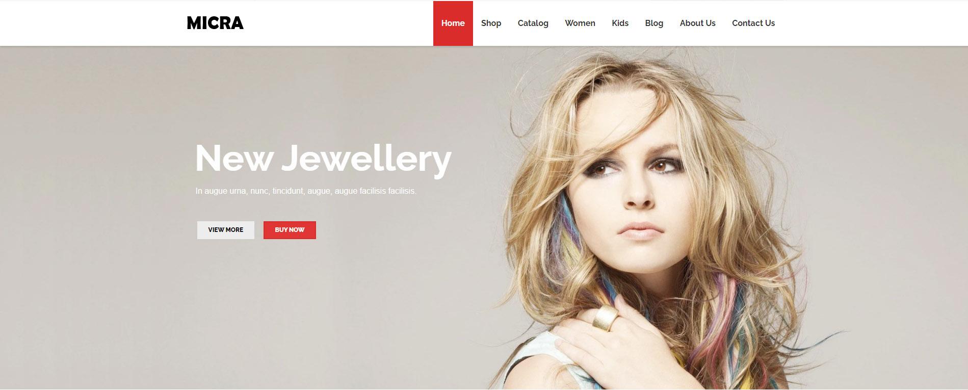 Shopify Micra Theme